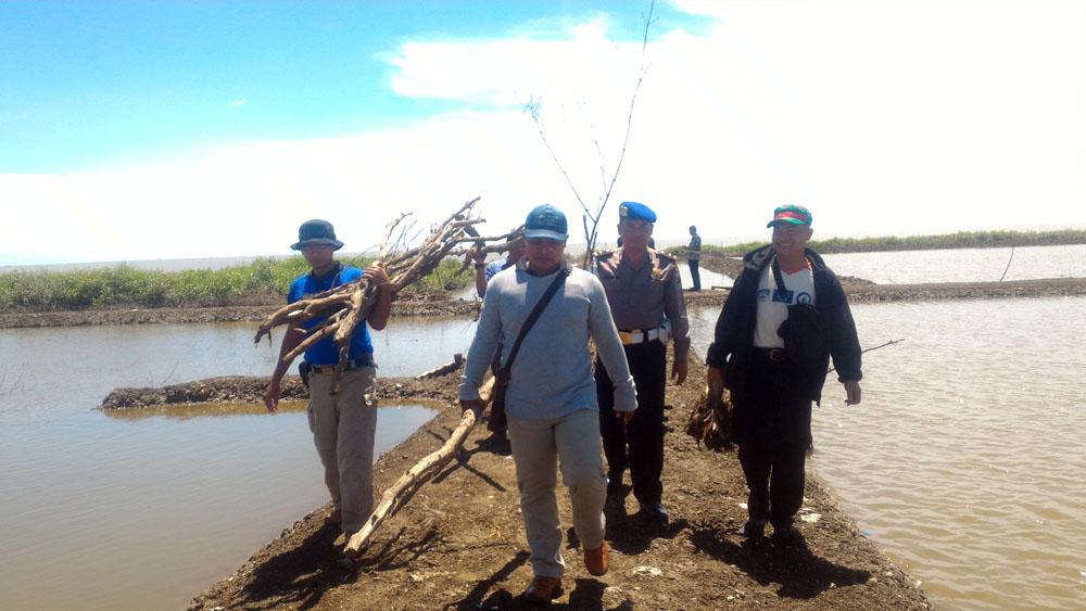 Pembabatan Mangrove Diindikasikan Untuk Lahan Tambak Ikan