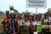 Jalan Rembang - Lasem Jadi Kawasan Tertib
