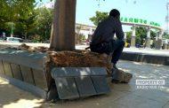 Fasilitas Alun-alun Kota Rembang Mulai Rusak
