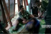 Pria Paruh Baya di Rembang Tewas Saat Mencari Rumput