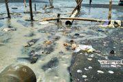 Dibalik Pencemaran Pantai di Rembang, Satu Perusahaan Sumbang 3 Kubik Limbah Tiap Hari