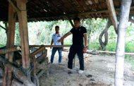 Waspada! Komplotan Pencuri Sapi Mulai Berkeliaran di Rembang