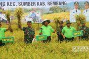 Hadiri Panen Raya, Bupati Rembang Dicurhati Soal Pengairan yang Sulit