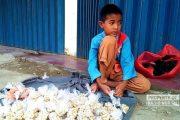 Himpitan Ekonomi, Bocah 9 Tahun di Rembang Rela Jualan Kacang