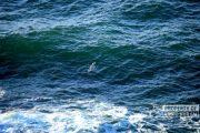 Nelayan Asal Rembang Dilaporkan Hilang Saat Melaut