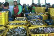 Ramadhan, Harga Ikan di Rembang Melambung