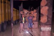 Polisi Bekuk Dua Orang Pria Pencuri Puluhan Gelondong Kayu Jati