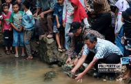 Momen Nguri-uri, Warga Desa Pasucen Lepas Bulus 'Sang Leluhur'