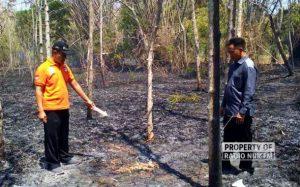 Kebakaran Lahan di Rembang - berita rembang