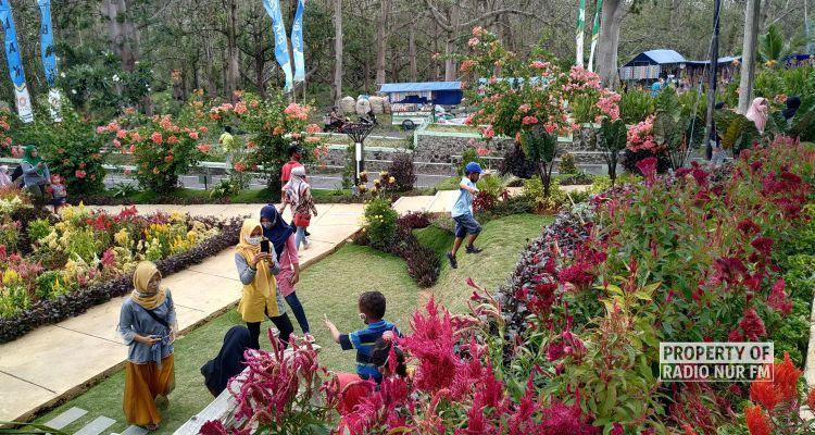 Haul Ra Kartini Bulu Matoh Launching Wisata Taman Batik Akar Kartini Berita Rembang